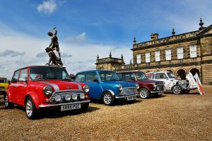 A clutch (sic!) of minis at Seaton Delival Hall