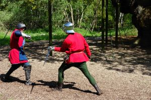 Swordmen in Sherwood Forest