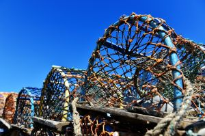 Lobster pots in Craster harbour. Lying in the lea of the castle, Craster is a cracking little venue