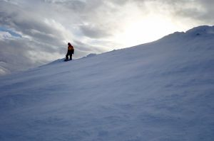 The top of Flypaper & Spring Run at Glencoe