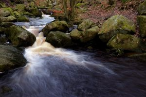 Padley Gorge - always worth a look