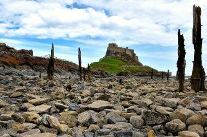 c31-Lindisfarne_DSC_1347.jpg