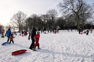 Brincliffe Park, Sheffield - sledge-central in Feb