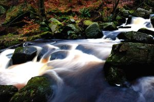 Padley Gorge, The Peak District